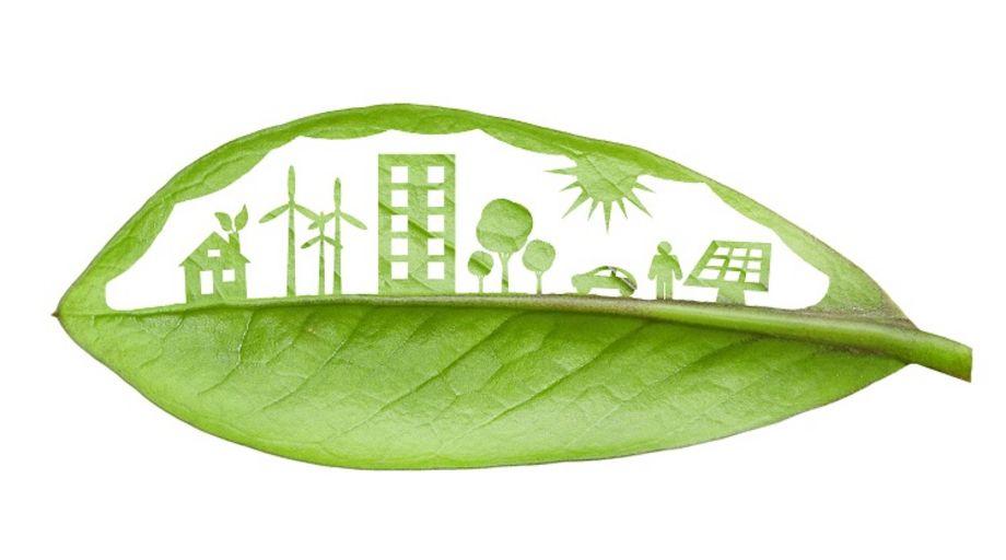 Dilemmata der Nachhaltigkeit