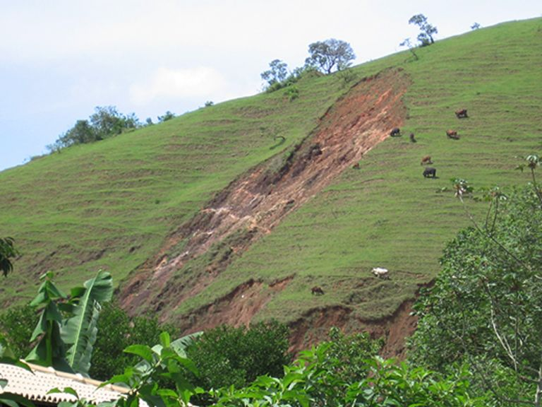 Brazil's Atlantic Forest: strategies against drastic droughts